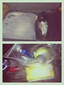 11823754_10200745926608410_1261489322_n Reisefieber – Die Taschen sind gepackt