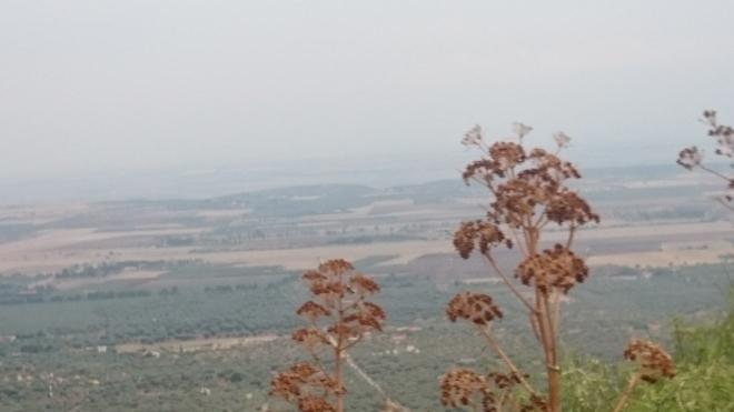dsc_0431 Ausflug zum Monte Sant'Angelo