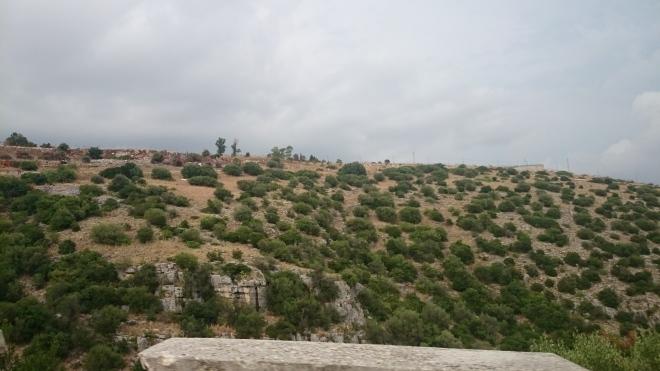 dsc_0432 Ausflug zum Monte Sant'Angelo